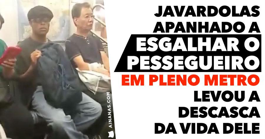 Homem apanhado a Esgalhar o Pessegueiro em Pleno Metro leva DESCASCA ÉPICA