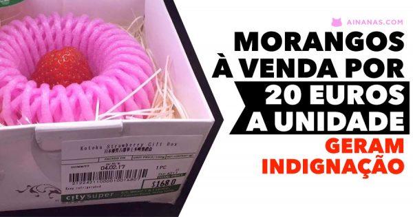 Há morangos à venda por 20 EUROS.. a unidade!