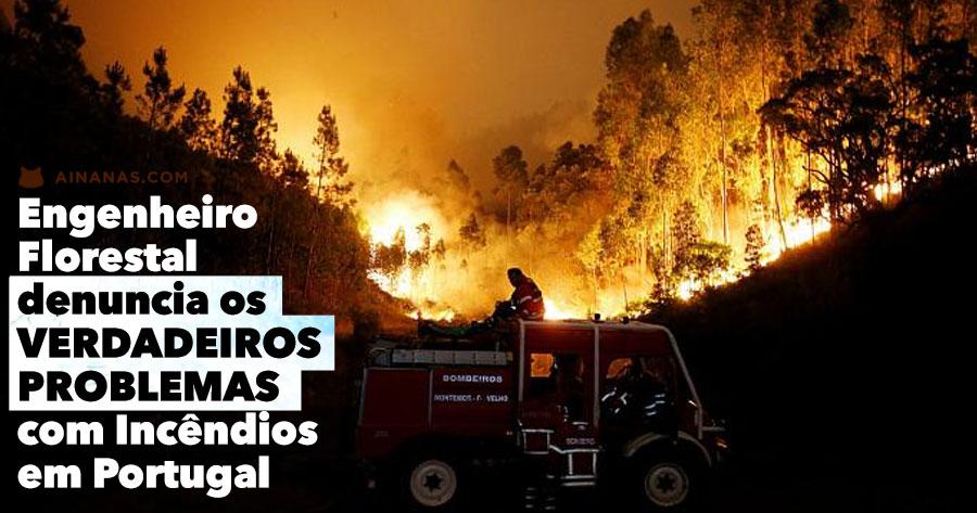 Engenheiro Florestal expõe VERDADEIROS PROBLEMAS com Incêndios em Portugal