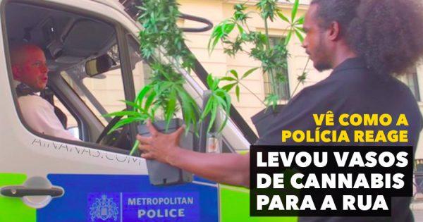 Andou com VASOS DE CANNABIS nas Ruas de Londres para ver como a Polícia Reagia