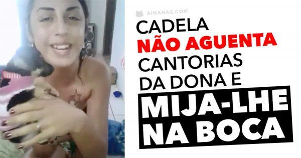 Cadela não aguenta cantoria da dona e MIJA-LHE NA BOCA