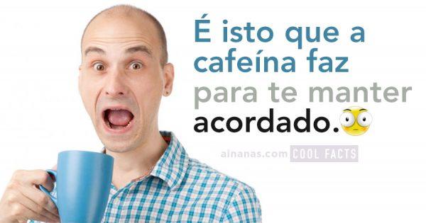 O que faz a CAFEÍNA para nos manter acordados?