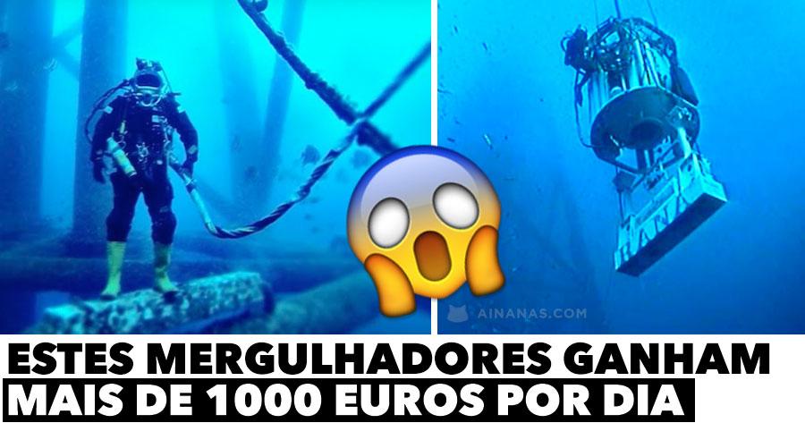 Estes mergulhadores ganham MAIS DE 1000 EUROS por dia