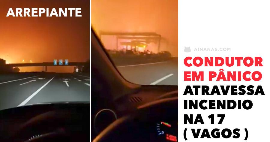 Condutor EM PÂNICO conduz por entre as chamas em Vagos (A17)