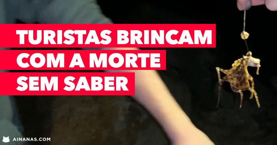 Turistas BRINCAM COM A MORTE sem saber