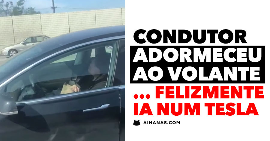 Condutor ADORMECE AO VOLANTE... do carro certo