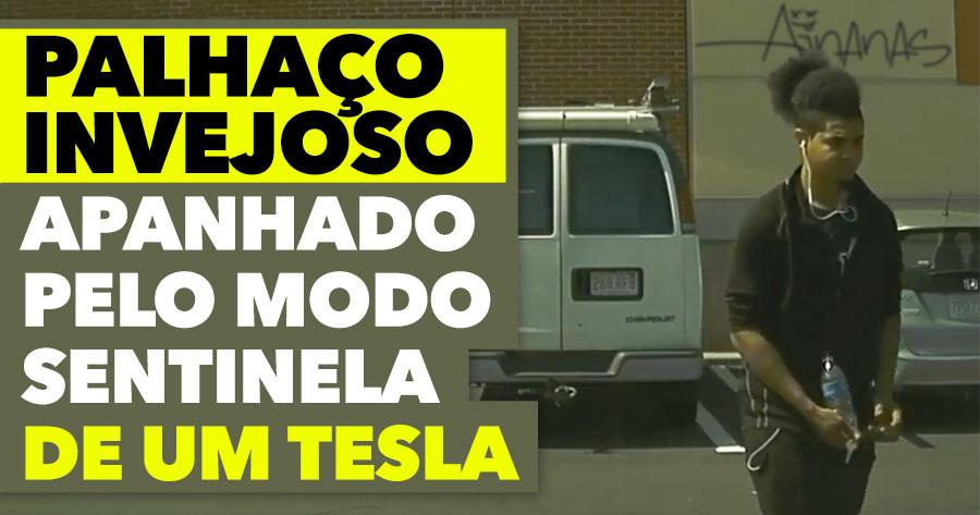 Riscou um Tesla... MAS TRAMOU-SE!
