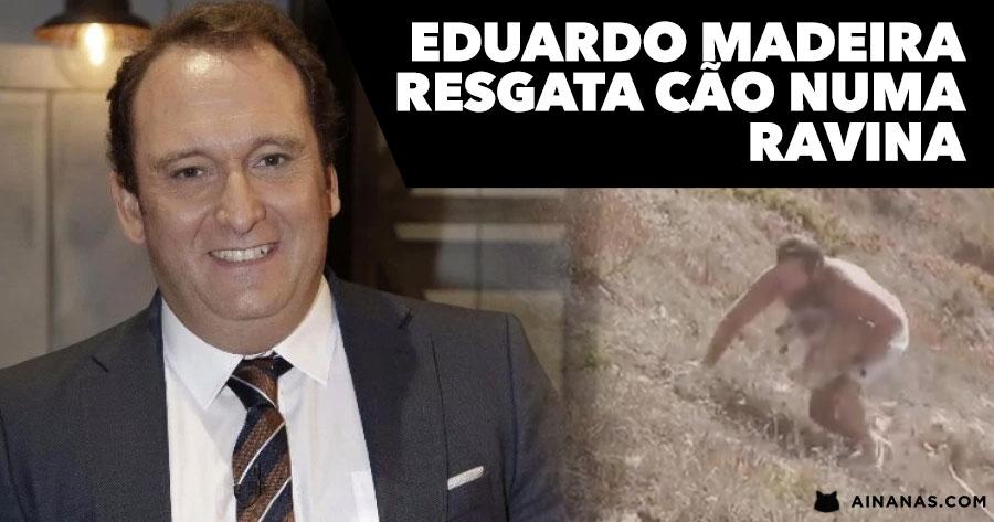 EDUARDO MADEIRA resgata cão de uma Ravina
